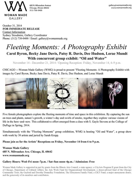 Microsoft Word - press-fleetingmoments2014.doc